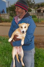 Animal Anti-Cruelty League_Bredasdorp_Services