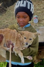 Animal Anti-Cruelty League_Bredasdorp_Services4