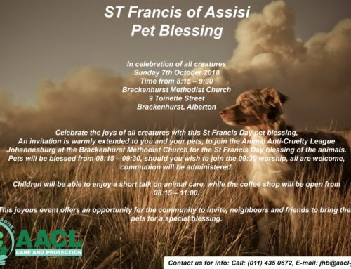 ST Francis of Assisi Pet Blessing 2018