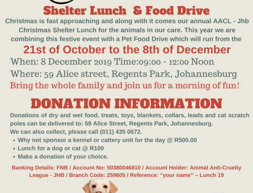 AACL – Johannesburg Christmas Shelter Lunch & Food drive!